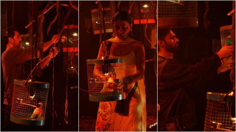 Bigg Boss 14 23rd November updates : Kavita saves Eijaz from eviction, nominates Aly