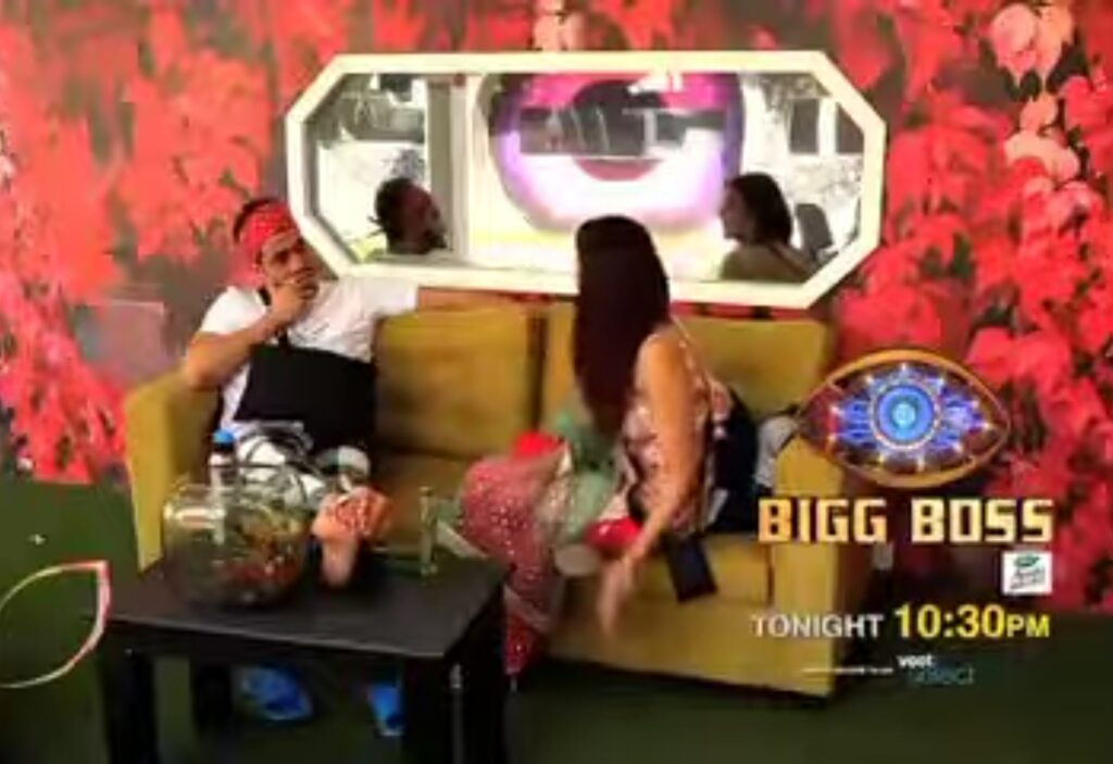 Aly Goni and Jasmine Bhasin in bigg Boss 14.