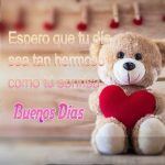 Peluche Buenos Dias Amor wpp1612858888837 300x300 1
